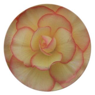 Begonia Tallrik