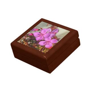 Begoniasgåvan boxas - välj färg & formatet smyckeskrin