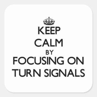 Behållalugn, genom att fokusera på blinkers fyrkantiga klistermärken