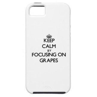 Behållalugn, genom att fokusera på druvor iPhone 5 fodral