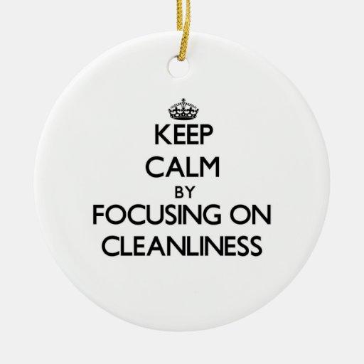 Behållalugn, genom att fokusera på renlighet julgranskula