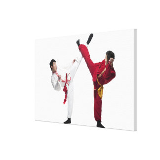 Beijing china 12 canvastryck