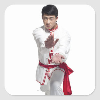 Beijing china 5 fyrkantigt klistermärke