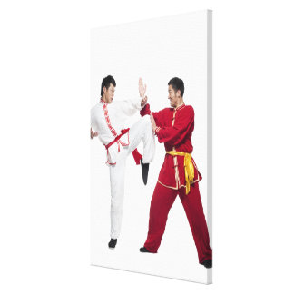 Beijing china 6 canvastryck