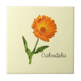 Belägga med tegel - calendulaen liten kakelplatta