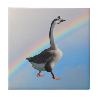 Belägga med tegel - gåsen och regnbågen kakelplatta