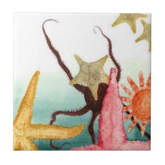 Belägga med tegel sjöstjärnan Octupus för liv för Kakelplatta
