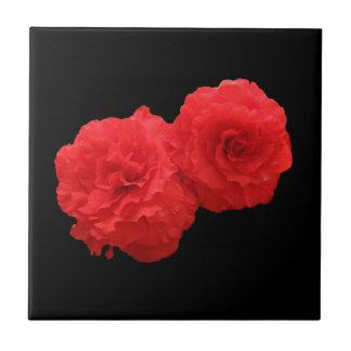 Belägga med tegel två Roseform röda begonias Kakelplatta