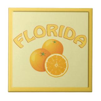 Belägger med tegel den hem- dekoren för Florida or Kakelplatta