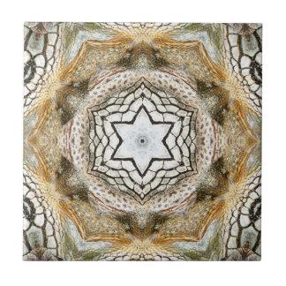Belägger med tegel den keramiska geometriska kakelplatta