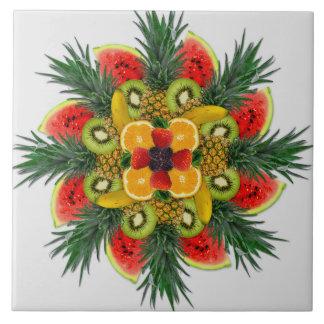 Belägger med tegel keramisk orange frukt för kakelplatta