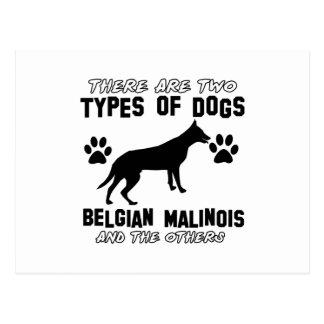 BelgareMalinois hund design Vykort