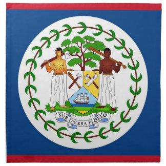 Belize flagga på den MoJo servetten