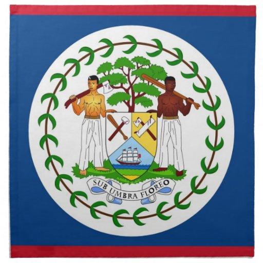 Belize flagga på den MoJo servetten Servetter