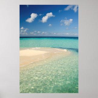 Belize karibiskt hav. Goff Caye, en liten ö Poster