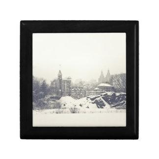 Belvedereslott i vintern i Central Park Minnesask