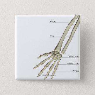 Ben av underarmen standard kanpp fyrkantig 5.1 cm