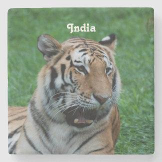 Bengal tiger i Indien Underlägg Sten