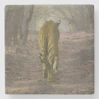 Bengal tiger i skogen i Ranthambore Underlägg Sten