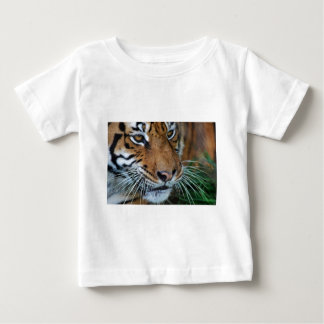 Bengal tiger tätt upp afrika t-shirt