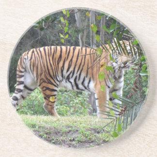 Bengal tigerkustfartyg underlägg