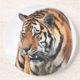 Bengal tigervilda djur underlägg sandsten