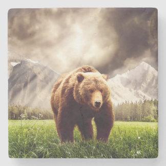 Bergbjörn Underlägg Sten
