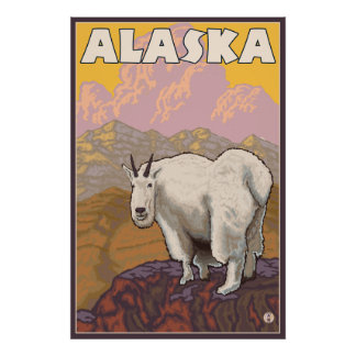 Bergsfår - Alaska Poster
