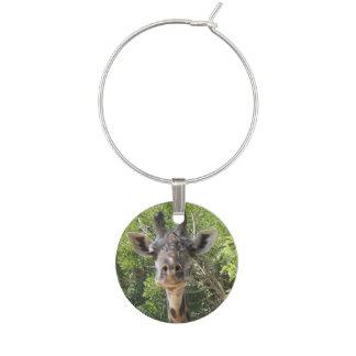 Berlock för giraffindividvin
