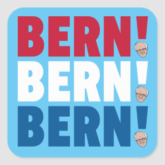 Bern Bern Bern Bernie slipmaskiner Fyrkantigt Klistermärke