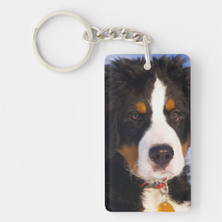 Bernese berghund - gulligt valpfoto nyckelring