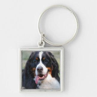 Bernese berghund med den stora tungan Keychain Fyrkantig Silverfärgad Nyckelring