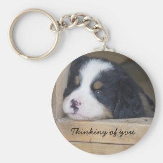 Bernese berghund - som är tänkande av dig rund nyckelring
