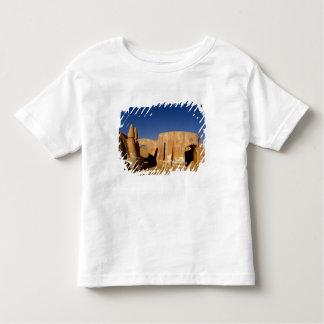 Berömd filmuppsättning av stjärnkrigfilmer i tee shirts