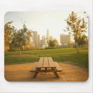 Beskåda av centra från picknick i stads- parkerar mus mattor