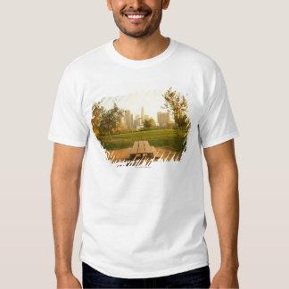 Beskåda av centra från picknick i stads- parkerar tröjor