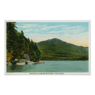 Beskåda av det Whiteface berg från älgön Poster