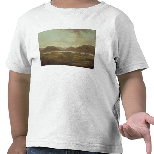 Beskåda av sjöar och bergen av Killarney, Irel Tee Shirts
