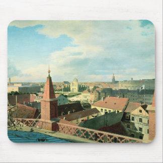 Beskåda av staden av Berlin med det Altes museet Musmatta