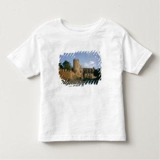Beskåda av staden tröjor