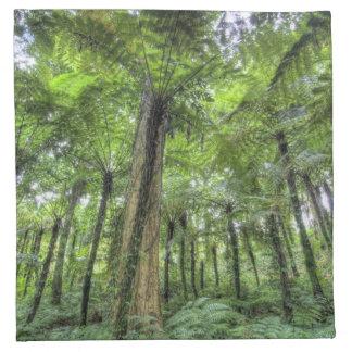 Beskåda av vegetation i Bali botanisk trädgård, Tygservett