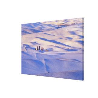 Beskåda från den Steptoe butten av Rolling Hills Canvastryck