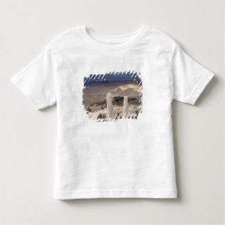 Beskåda från monteringen Moses T Shirts