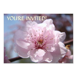 Beställnings- inbjudningar är du inbjuden! Rosa