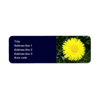 Beställnings- post- etikett för två maskrosor returadress etikett
