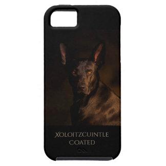 Bestruket Xoloitzcuintle mobilt fodral iPhone 5 Case-Mate Fodraler