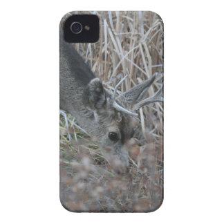 Betande bock iPhone 4 Case-Mate case