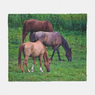 Betande hästullfilt fleecefilt