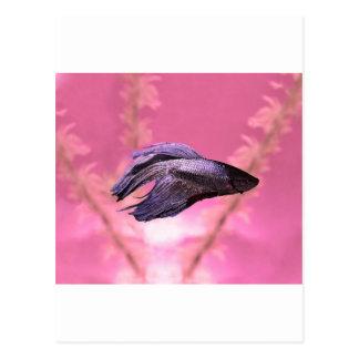 Betta är den bättre rosa versionen vykort