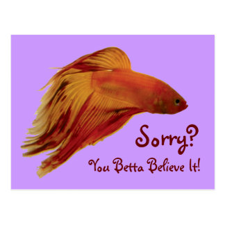 Betta - ledsen vykort